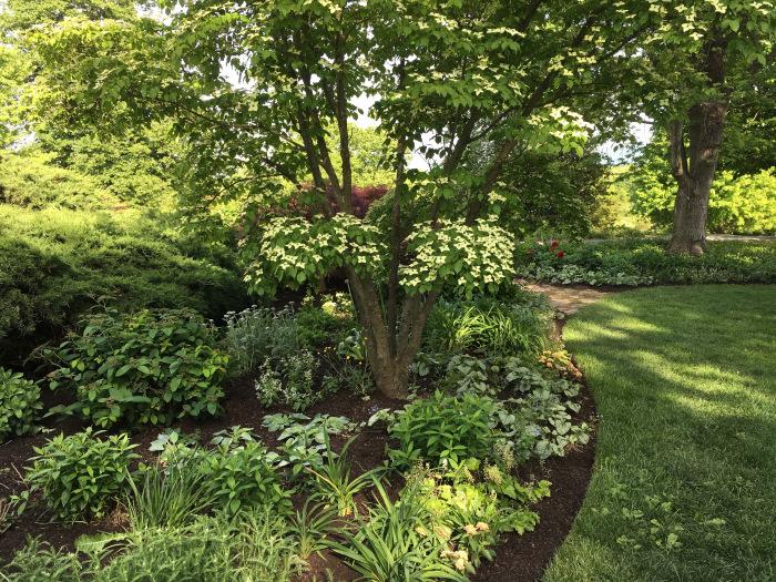 PHOTO-Shade garden